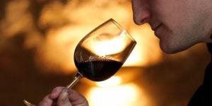 10 pour cent des cancers chez l'homme sont imputables à l'alcool